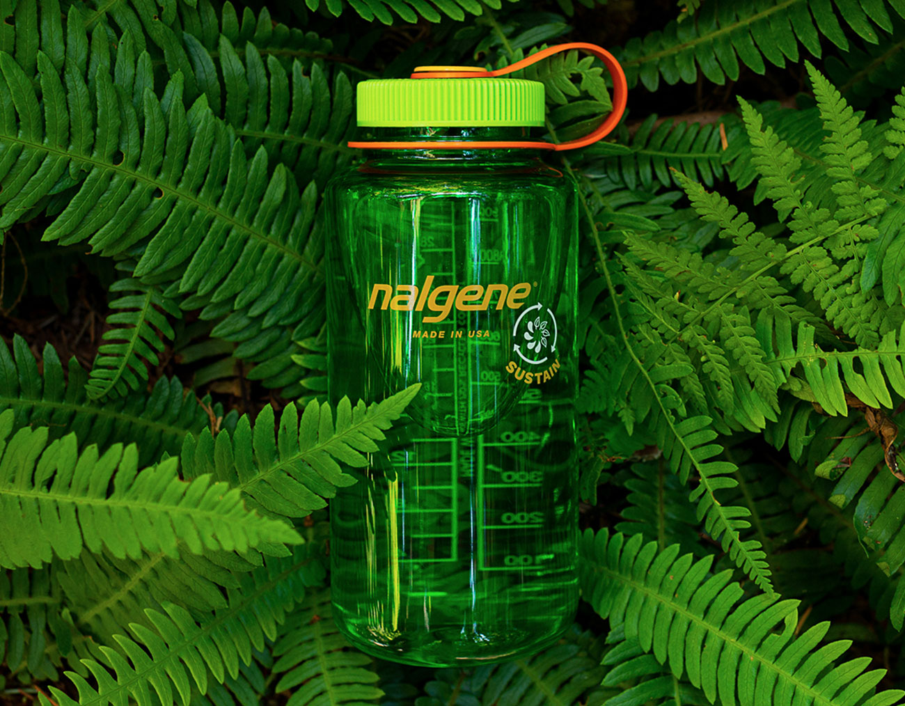Nalgene 32 oz Sustain Water Bottle